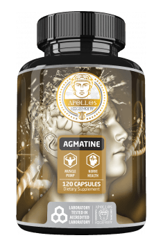 Apollo's Hegemony Agmatine - Online Shop with Best Prices