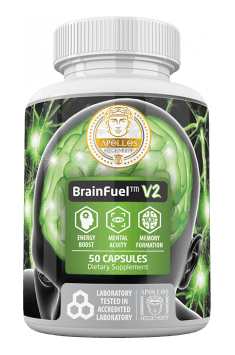 Brain Fuel v2