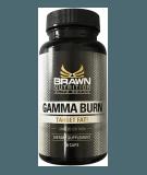 Gamma Burn