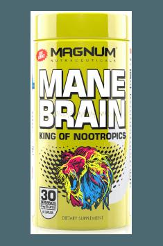 Mane Brain