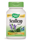 Scullap Herb