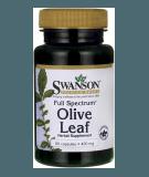 Olive Leaf 400mg